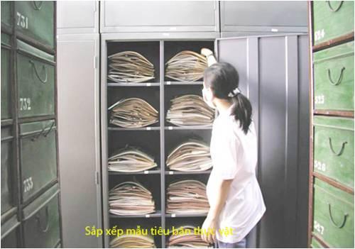 Bao tang thuc vat (1)