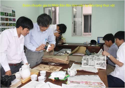 Bao tang thuc vat (7)