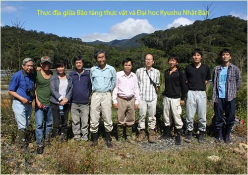 Bao tang thuc vat (9)